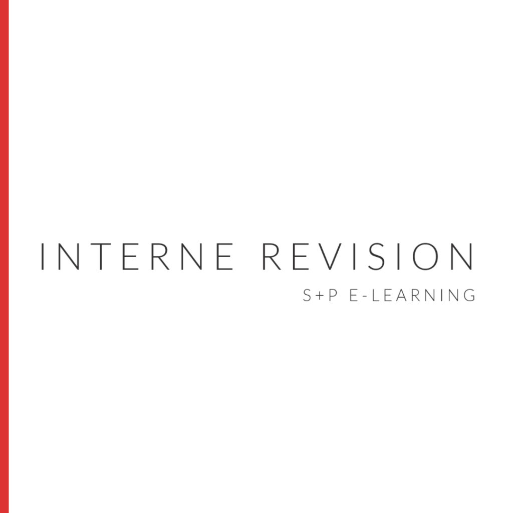 E-Learning Interne Revision